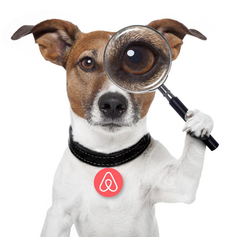 коллаж изображение: собака с медалью - знаком айрбнб на шее и увеличительной лупой, как символ проверки отзывов_