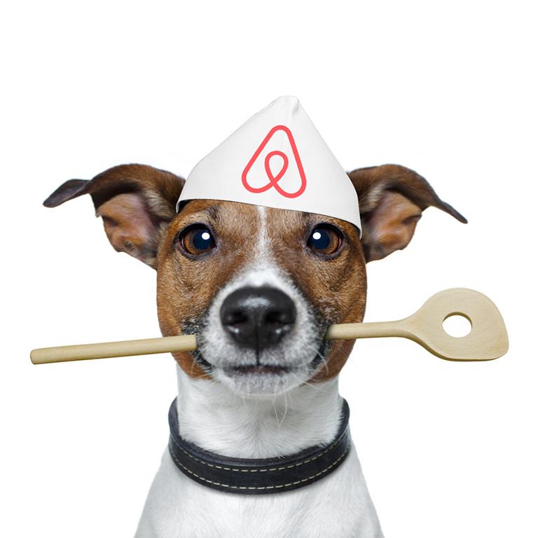 коллаж изображение: собака с медалью - знаком Аирбнб на шее, как символ службы_